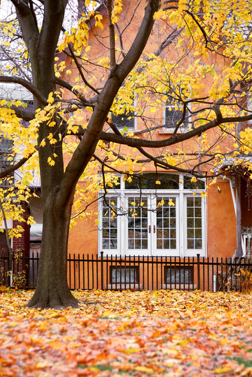 Real Estate Purchase in the Fall? Better than the Spring now.