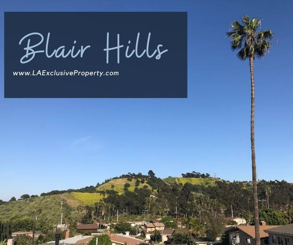 Blair Hills homes for sale